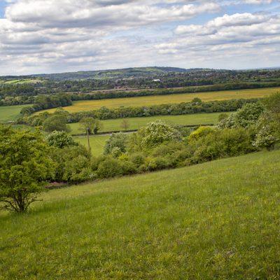 Lush countryside