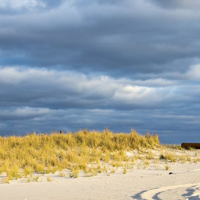 Sand dune lit by the late afternoon sun.  Overlook Beach