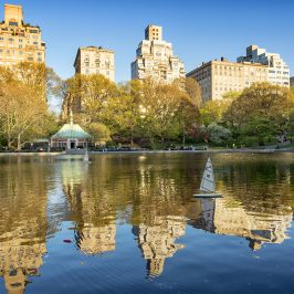 Central Park: Around The Lake